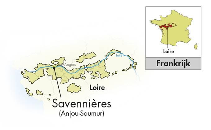 Moulin de Chauvigné Savennières Clos Brochard